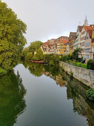 Neckarfront Tuebingen1