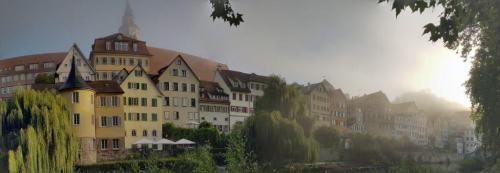 Panorama-Neckarfront Tuebingen